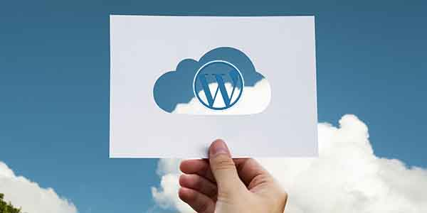back up cho website wordpress