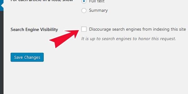 hiển thị website wordpress với các máy tìm kiếm