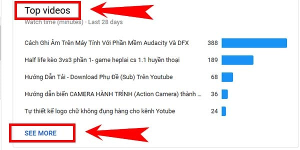 Mục Overview trong Youtube Analytic