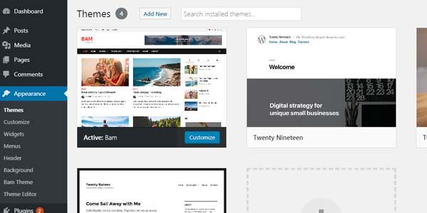 lựa chọn themes wordpress thế nào cho Blog của bạn